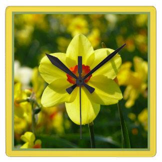 Relógio Quadrado Daffodils amarelos alaranjado 02.1g