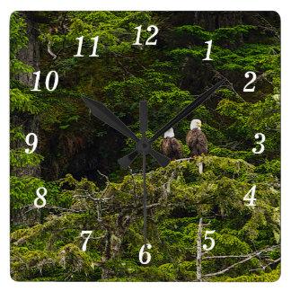 Relógio Quadrado Dois Eagles empoleiraram Painterly