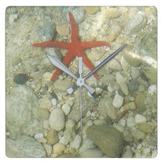 Relógio Quadrado estrela de mar