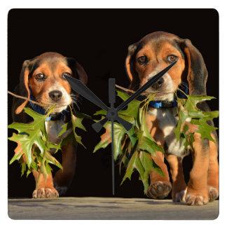Relógio Quadrado Filhotes de cachorro brincalhão dos irmãos do