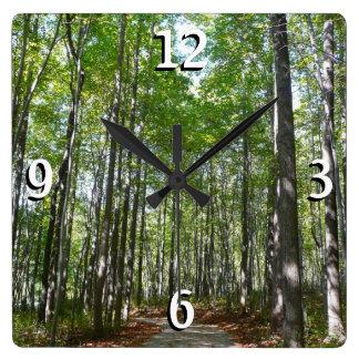 Relógio Quadrado Foto arborizada centenária do trajeto II Colômbia