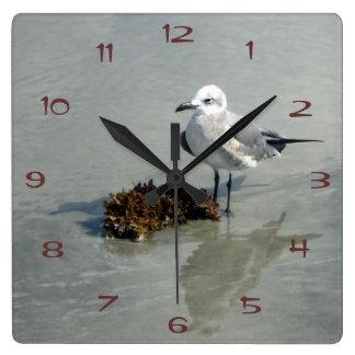Relógio Quadrado Gaivota com alga
