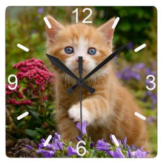 Relógio Quadrado Gatinho bonito do gato do gengibre na