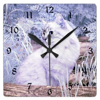 Relógio Quadrado Gato do gatinho da fantasia
