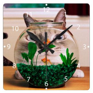 Relógio Quadrado Gato e peixes - gato - gatos engraçados - gato