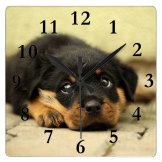 Relógio Quadrado Imagem do Doggy