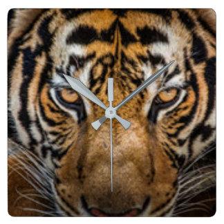 Relógio Quadrado Impressão animal do tigre