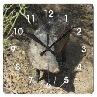 Relógio Quadrado Javelina