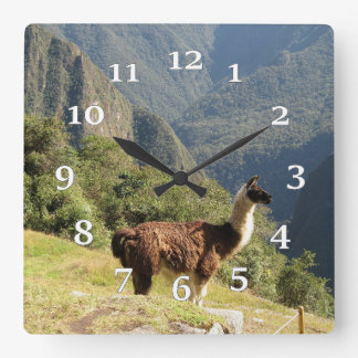 Relógio Quadrado Lama
