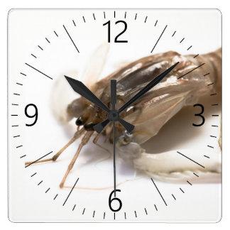 Relógio Quadrado Langoustine