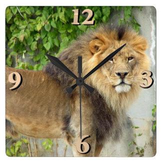 Relógio Quadrado Leão no Masai Mara 2