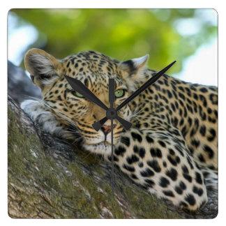 Relógio Quadrado Leopardo impressionante