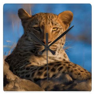 Relógio Quadrado Leopardo na rocha