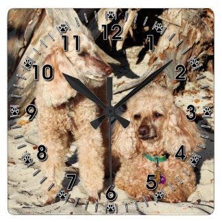 Relógio Quadrado Lixívia - caniches - Romeo Remy