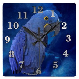 Relógio Quadrado Macaw do jacinto