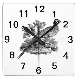 Relógio Quadrado Pássaro de jogo do faisão do vintage que tira BW