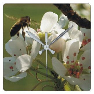Relógio Quadrado Pulso de disparo da abelha