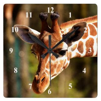 Relógio Quadrado Pulso de disparo de parede do girafa