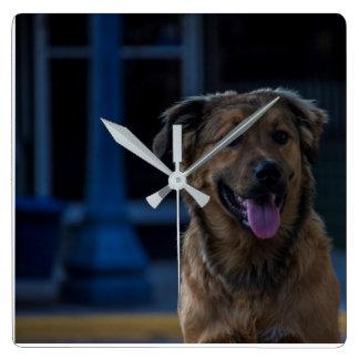 Relógio Quadrado Pulso de disparo do cão