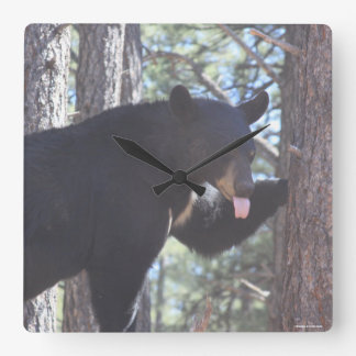 Relógio Quadrado Pulso de disparo do urso preto