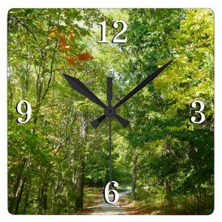 Relógio Quadrado Trajeto arborizado centenário mim natureza da