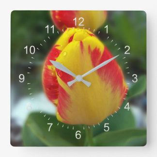 Relógio Quadrado tulipas vermelhas amarelas