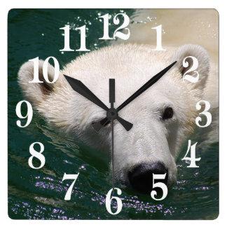 Relógio Quadrado Um urso polar apenas que refrigera