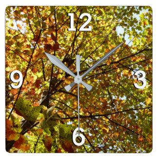 Relógio Quadrado Verde da árvore de bordo e outono em mudança do