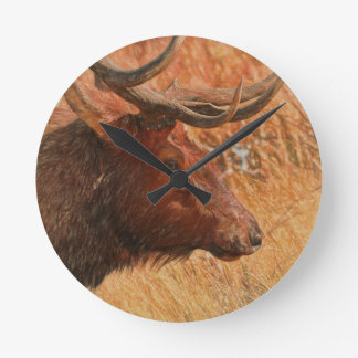 Relógio Redondo Alces de Bull