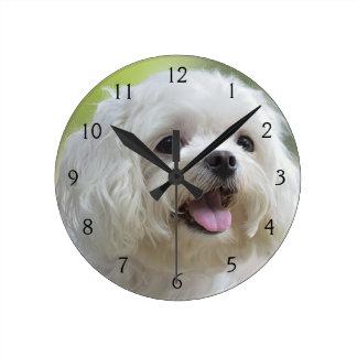 Relógio Redondo Cão maltês branco
