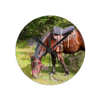 Relógio Redondo Cavalo perto do EL Chalten, Argentina