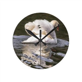 Relógio Redondo Cisne tímida