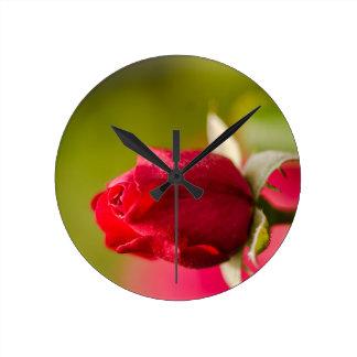 Relógio Redondo Design ascendente próximo da rosa vermelha