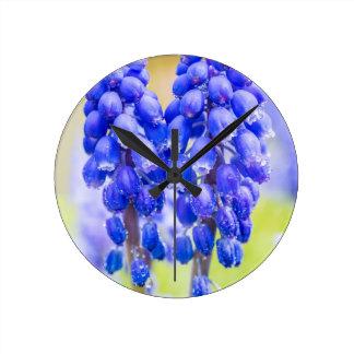 Relógio Redondo Dois jacintos de uva azuis no primavera