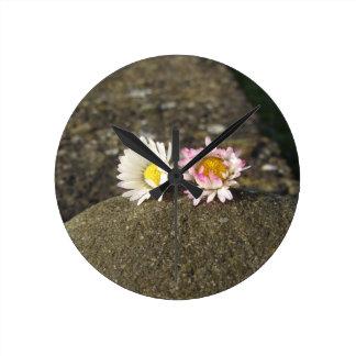 Relógio Redondo Duas margaridas brancas que encontram-se na pedra