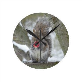 Relógio Redondo Esquilo da morango