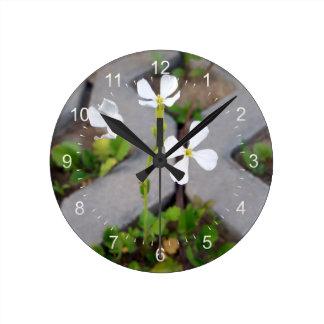 Relógio Redondo Flor no parque de estacionamento