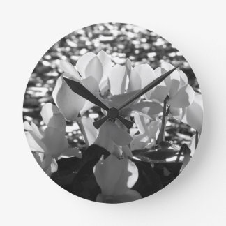 Relógio Redondo Flores brancas do cyclamen de Backlits no fundo