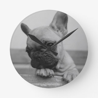Relógio Redondo Frenchie puppy