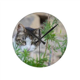 Relógio Redondo Gato bonito para cada dia