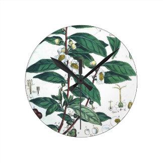 Relógio Redondo Impressão botânico do chá verde do vintage