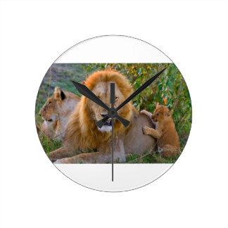 Relógio Redondo Leão Cub bonito que joga com pai, Kenya