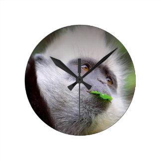 Relógio Redondo Macaco africano