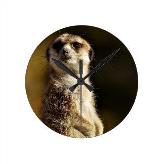 Relógio Redondo Meerkat