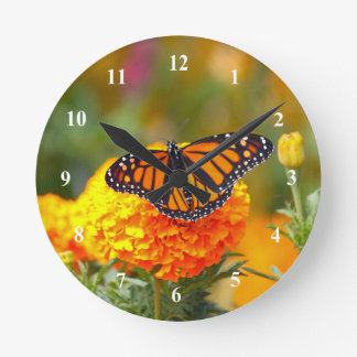 Relógio Redondo Monarca em um pulso de disparo do cravo-de-defunto