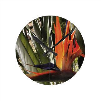 Relógio Redondo Pássaro de paraíso (Strelitzia)