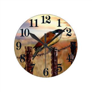 Relógio Redondo Pássaro do cuco do Coucal de Burchell