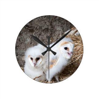 Relógio Redondo Pintinhos da coruja de celeiro em um ninho