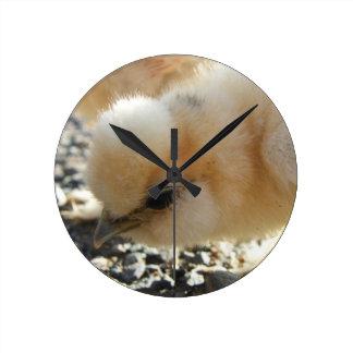 Relógio Redondo Pulso de disparo de parede do pintinho de Silkie