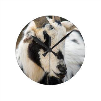 Relógio Redondo Retrato da cabra
